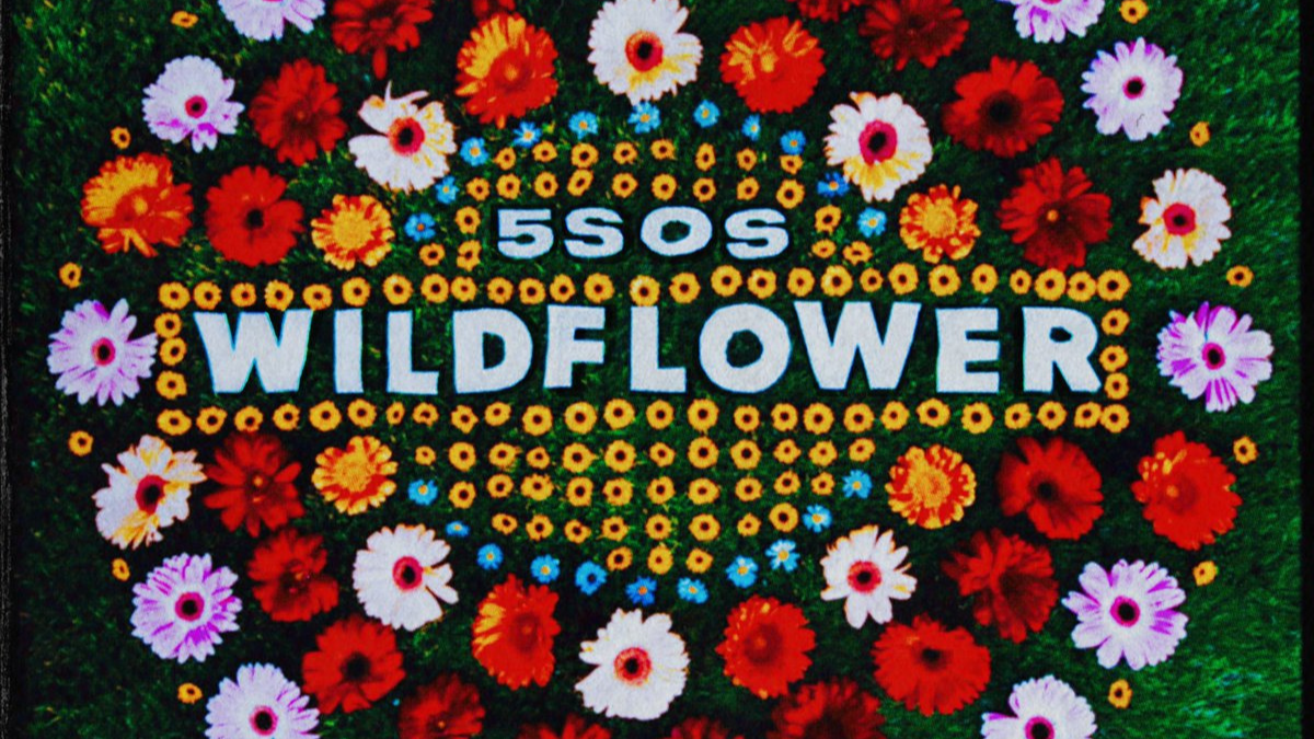 We'll Tell You What We Like: 5SOS's Wildflower