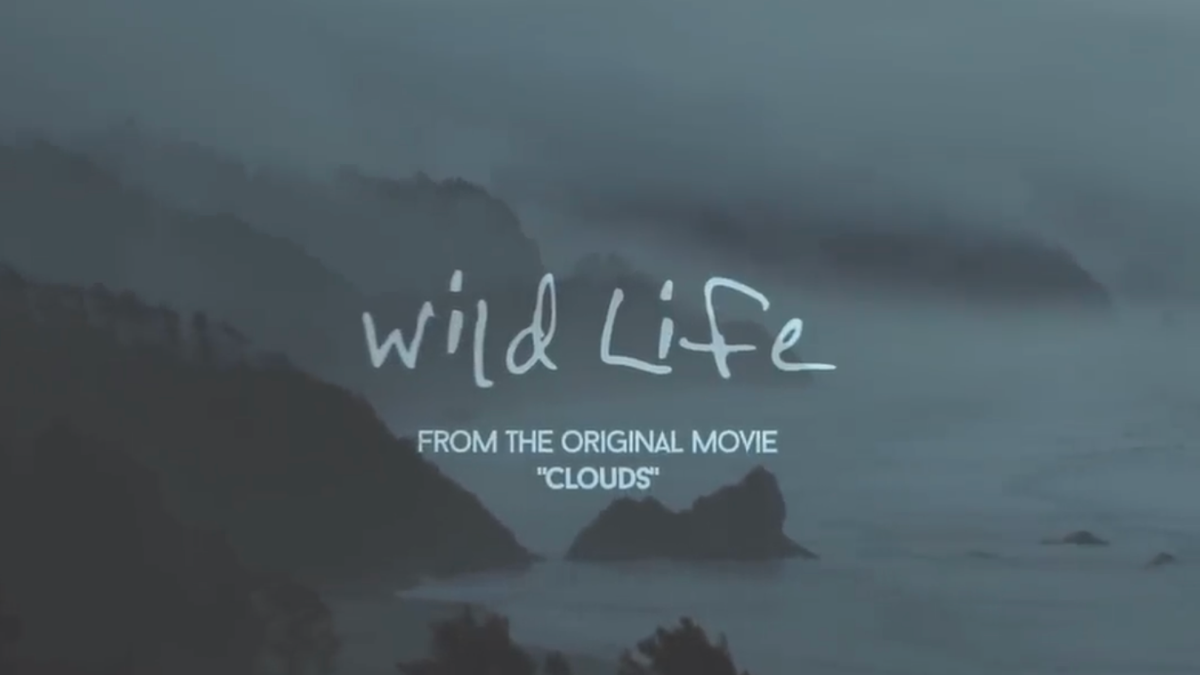 OneRepublic Is Bringing 'Wild Life' A Song Perfectly Describing Living Life To Disney+