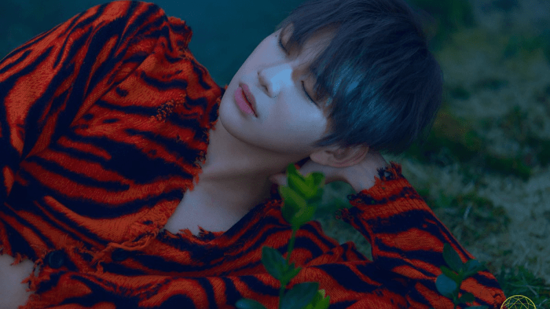 Let Kang Daniel Be Your 'Antidote' For Dull Days