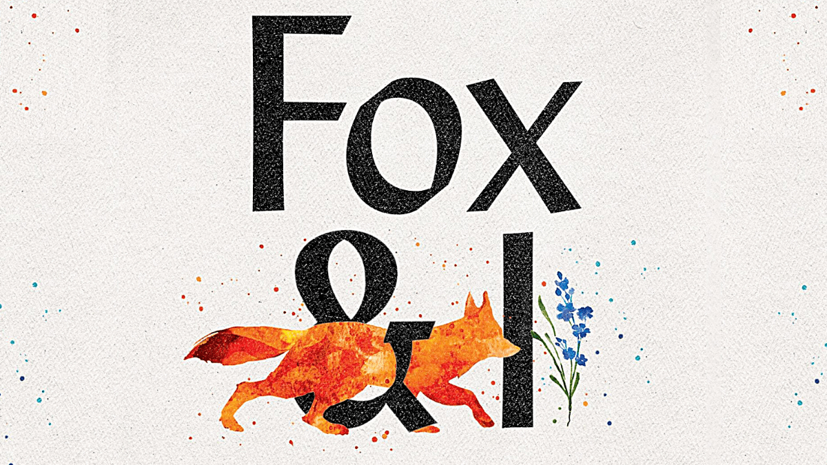 🦊 How Do You Even Talk To A Fox? 🦊