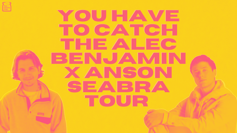 You Have To Catch The Alec Benjamin x Anson Seabra Tour