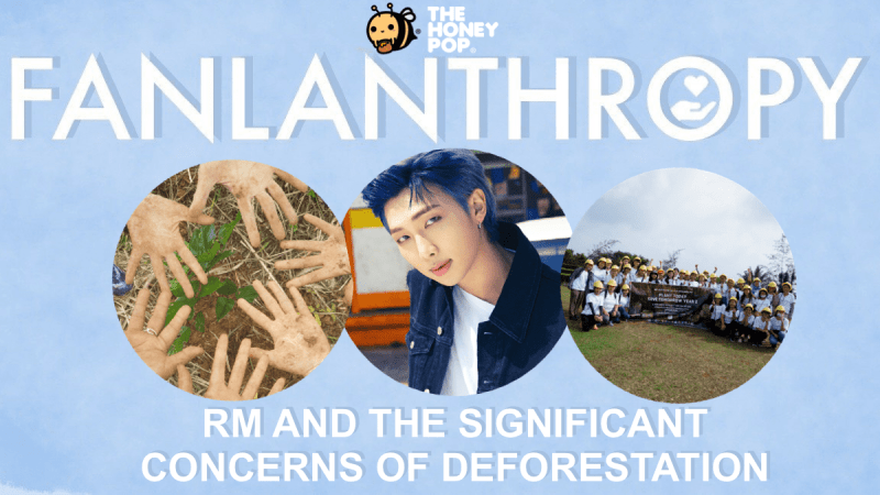 Fanlanthropy: RM And The Significant Concerns of Deforestation